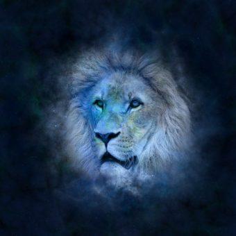 Das Sternzeichen Löwe